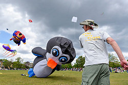 © Licensed to London News Pictures. 14/05/2017. London, UK.  Members of kite flying clubs fly huge kites during the annual Streatham Kite Festival taking place on Streatham Common in South London.    Photo credit : Stephen Chung/LNP