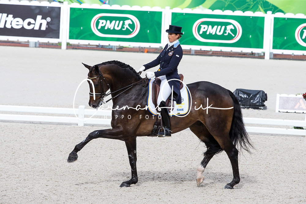 Tinne Vilhelmson Silfven, (SWE), Don Auriello - Grand Prix Team Competition Dressage - Alltech FEI World Equestrian Games™ 2014 - Normandy, France.<br /> © Hippo Foto Team - Leanjo de Koster<br /> 25/06/14