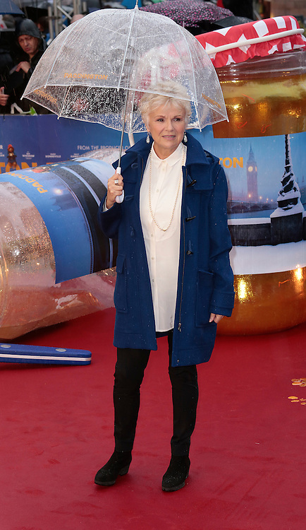 23-11-14 - Paddington World Premiere, Odeon, Leicetser Square, London - Red Carpet Arrivals<br /> <br /> Pictured: Julie Walters<br /> ©Exclusivepix