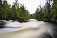 Stromschnellen Myllykoski im Oulanka Nationalpark