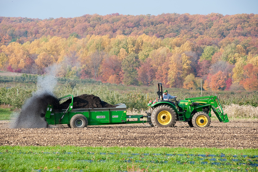 Tractor pouring ash on the fields