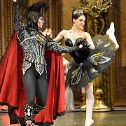 The St Petersburg Ballet Theatre performing SWAN LAKE at The Coliseum London UK  on 22.08.2018 Yulia Stepnova