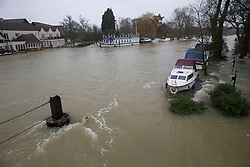 Flooding at Goring on Thames, Oxfordshire, United Kingdom, Tuesday, 11th February 2014. Picture by i-Images