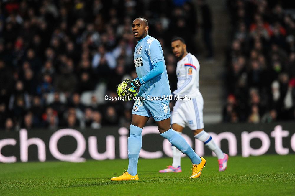 Ali AHAMADA - 11.01.2015 - Lyon / Toulouse - 20eme journee de Ligue 1<br /> Photo : Jean Paul Thomas / Icon Sport