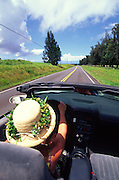Driving, Kohala, Island of Hawaii<br />