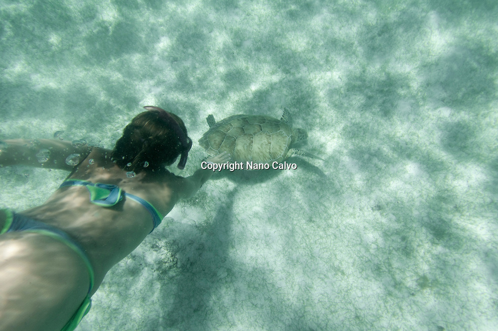 Snorkel with turtles in Akumal, Yucatan Peninsula, Mexico