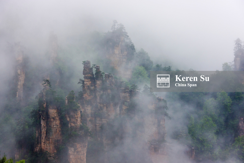Sandstone pillars in mist, Zhangjiajie National Forest Park (UNESCO World Heritage site), Hunan Province, China