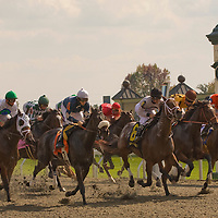 Thoroughbreds race for the finish line at Keeneland in Lexington, Kentucky.