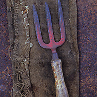 Well-used garden hand fork lying on hessian sack on rusty metal sheet
