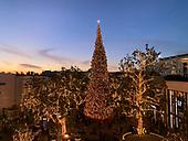 Dec 8, 2018-News-The Grove Los Angeles Views
