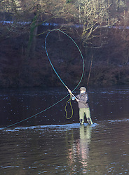 The Salmon Fishing season on the River Tay opened today.  A small group in Dunkeld  toasted the season before heading onto the banks and into boats.<br /> <br /> Pictured: Dani Morey casting her line on the River Tay near Dunkeld