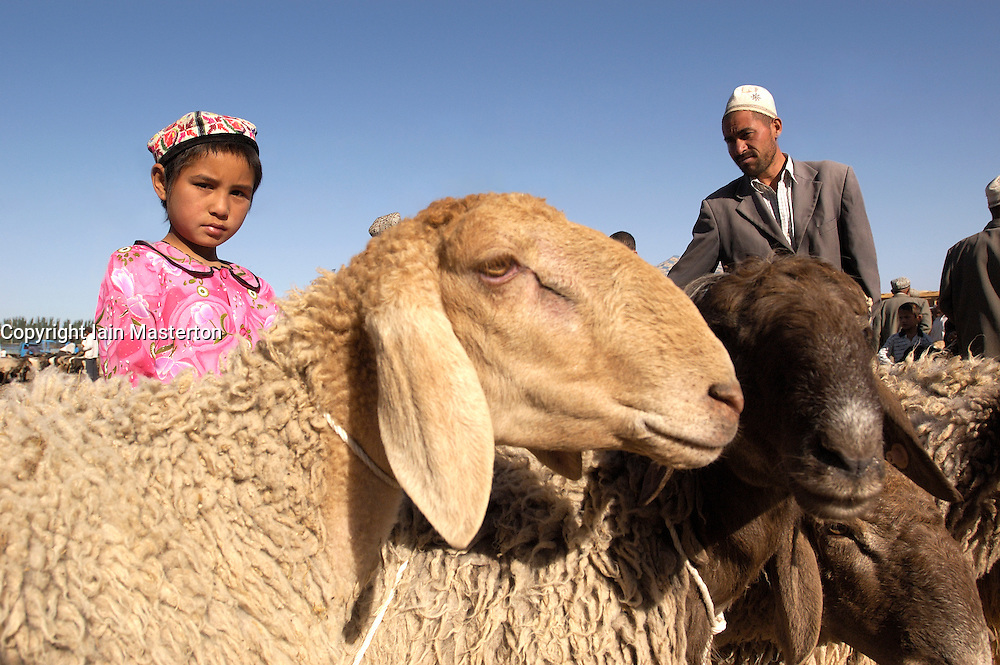 Muslim Uyghur girl tending sheep at famous Kashgar Sunday market on the old Silk Road in Xinjiang China