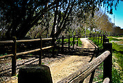Horse Trail At South Fork In Santa Clarita California