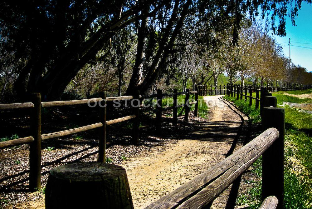 Horse Trail At South Fork In Santa Clarita California