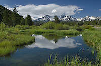 Wetlands in Stanley Basin, Sawtooth Mountains, Idaho