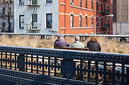 People sitting on bench on The High Line in New York, grasses