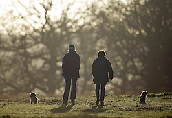 © London News Pictures. 22/02/2014. London, UK.  Dog walkers at sunrise at Richmond Park in West London. The south of England is experiencing warm weather for the time of year and sunshine following weeks of rain and flooding.  Photo credit: Ben Cawthra/LNP