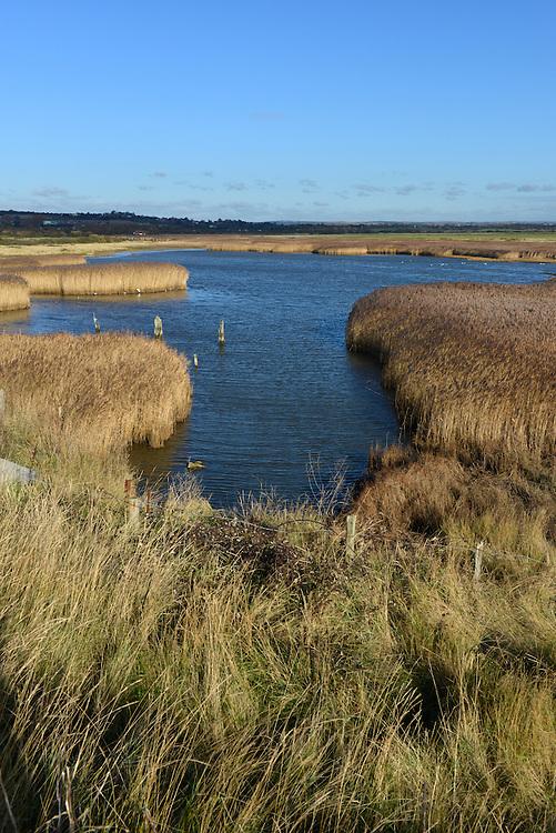 Farlington Marshes Nature Reserve near Portsmouth, Hampshire
