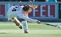 AMSTELVEEN - Amsterdam speelster  tijdens de hoofdklasse hockeywedstrijd tussen de vrouwen van Amsterdam en Terriers (4-0). COPYRIGHT KOEN SUYK