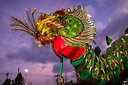 06 FEBRUARY 2014 - HAT YAI, SONGKHLA, THAILAND: A Dragon Dance performs at the Tong Sia Siang Tueng temple for Lunar New Year. Hat Yai was originally settled by Chinese immigrants and still has a large ethnic Chinese population. Chinese holidays, especially Lunar New Year (Tet) and the Vegetarian Festival are important citywide holidays. The Lunar New Year festival in Hat Yai is more than two weeks.     PHOTO BY JACK KURTZ