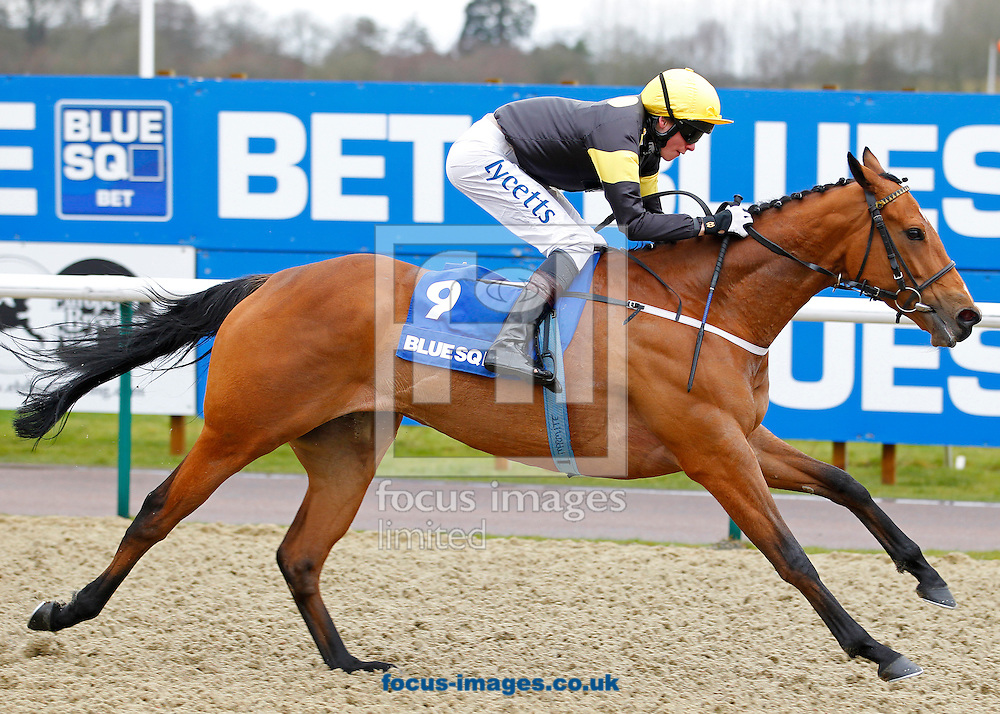 Picture by John Hoy/Focus Images Ltd +44 7583 422396.16/03/2013.William Twiston Davies riding Ladies Are Forever winning the Blue Square Hever Sprint Stakes at Lingfield Park, Lingfield, Surrey