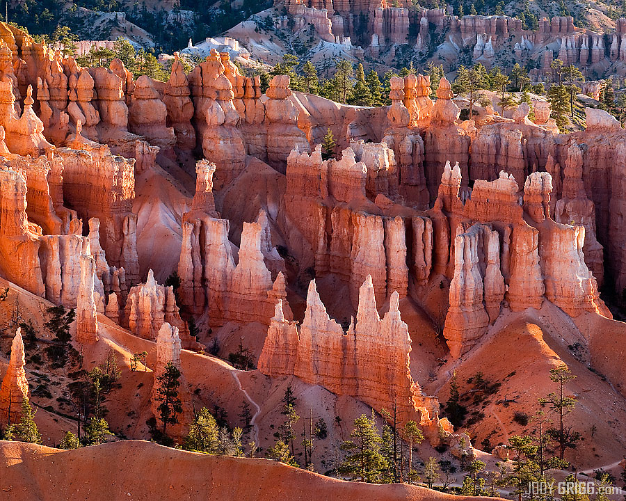 Hoodoos in Bryce Canon amphitheater