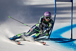 27.11.2010, Ajax Mountain, Aspen, USA, FIS World Cup Ski Alpin, Lady, Aspen, Giant Slalom, im Bild Slovenian Alpine Ski Team Athlete Tina Maze // during Womens Alpine World Cup Apine Ski Racing Giant Slalom on Ajax Mountain in Aspen, Colorado on November 27, 2010.