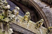Nederland, Den Bosch, 10-11-2005..Stenen figuren op de steunberen van de Sint janskathedraal. Kerk van Sint Jan, St. Jan, Sint-Jan. Kathedraal. Behalve de toren, kerktoren uit de Gothiek. Middeleeuwse bouwkunst, architectuur, architektuur uit de middeleeuwen. Gothische bouwstijl, 's Hertogenbosch, Denbosch. Beeldhouwkunst...Foto: Flip Franssen