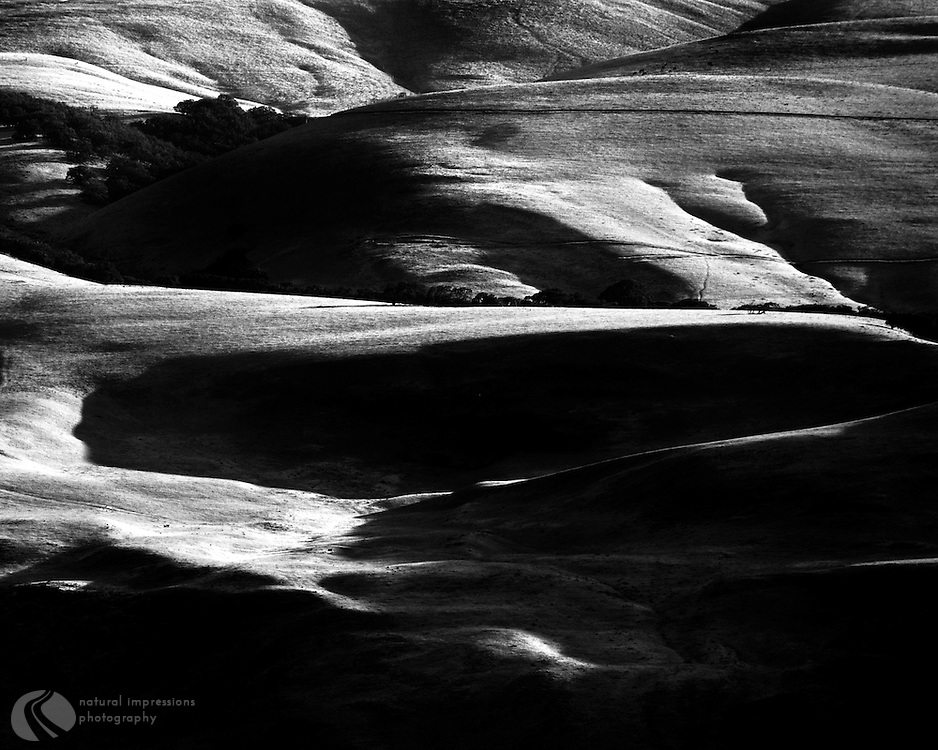 The pastureland and rolling hills of Eastern Washington are alive when the sun rises and sets.