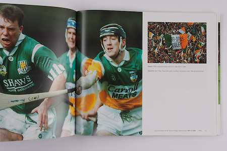 Offaly supporters bring colour to Croke Park in 1994.