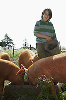 Boy (7-9) feeding pigs in sty