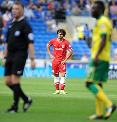Cardiff City's Fabio - Photo mandatory by-line: Alex James/JMP - Mobile: 07966 386802 30/08/2014 - SPORT - FOOTBALL - Cardiff - Cardiff City stadium - Cardiff City  v Norwich City - Barclays Premier League