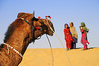 Rajasthan, India. 2008