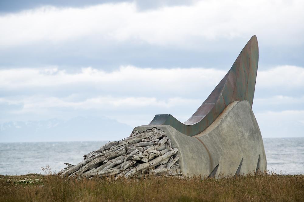 Sculpture, Rio Verde Chile