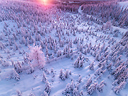 THE MAGIC OF WINTERTIME IN FINNISH LAPLAND<br /><br />When she was a little girl, photographer Tiina T&ouml;rm&auml;nen built castles out of snow. She spent her childhood in Finland&rsquo;s Southern Lapland, surrounded by lakes and forests, and each winter, she dug tunnels, doorways, and rooms, illuminated by flickering candlelight. She sang songs to her beloved dog Nappi on dark nights.<br /><br />T&ouml;rm&auml;nen was a child of nature; she played with the dogs more than she did other children. She picked wild berries and mushrooms while her family fished and hunted and grew their own vegetables.<br /><br />After an Edenic childhood, the artist moved to Helsinki at sixteen. She survived an abusive relationship, one that she feels robbed her of her teenage years, a time that should have been happy but was instead plagued by fear.<br /><br />After fifteen years away, the artist made the choice to return home to the North of Finland. She associates the city in some ways with the &ldquo;dark times,&rdquo; while in the countryside, home of the aurora borealis, she was able to find solace and comfort.<br /><br />When asked if her homecoming has helped to heal old wounds, the photographer suggests something a little more complicated. It takes time, and she&rsquo;s learning how to cope with the past, not to erase it. Every hardship, she says, has made her strong, and it&rsquo;s made her cherish the beautiful things in a world filled with ugliness. Most of all, she&rsquo;s forgiven herself.<br /><br />&ldquo;I have seen a lot shit in my life,&rdquo; the artist writes, &ldquo;and after recovering from all that darkness, I&rsquo;d rather share beauty.&rdquo;<br /><br />Winter is still her favorite season. When the snow falls, she bundles up and wanders into the unknown terrain. She met another dog who became her friend like Nappi. His name was Joppe, and until his passing at the age of fourteen, he spent many days exploring the frozen landscape by her side.<br /><br />In a 