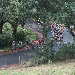 04-09-2016: Wielrennen: Ladies Tour: Valkenburg<br />VALKENBURG (NED) wielrennen   <br />Peloton net na Slenaken