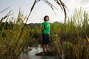 Patanaporn Kengchamba, a member of the Khon Rak Ban Kerd Environmental Group stands in a rice paddy in the village of Na Nong Bong in Loei Province. The mountains behind her are the location of a gold mine that the villagers allege continues to contaminate their water supply and affect their crops.