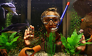 A 9 year old girl wearing a snorkel and a mask is looking at the fish in her aquarium.