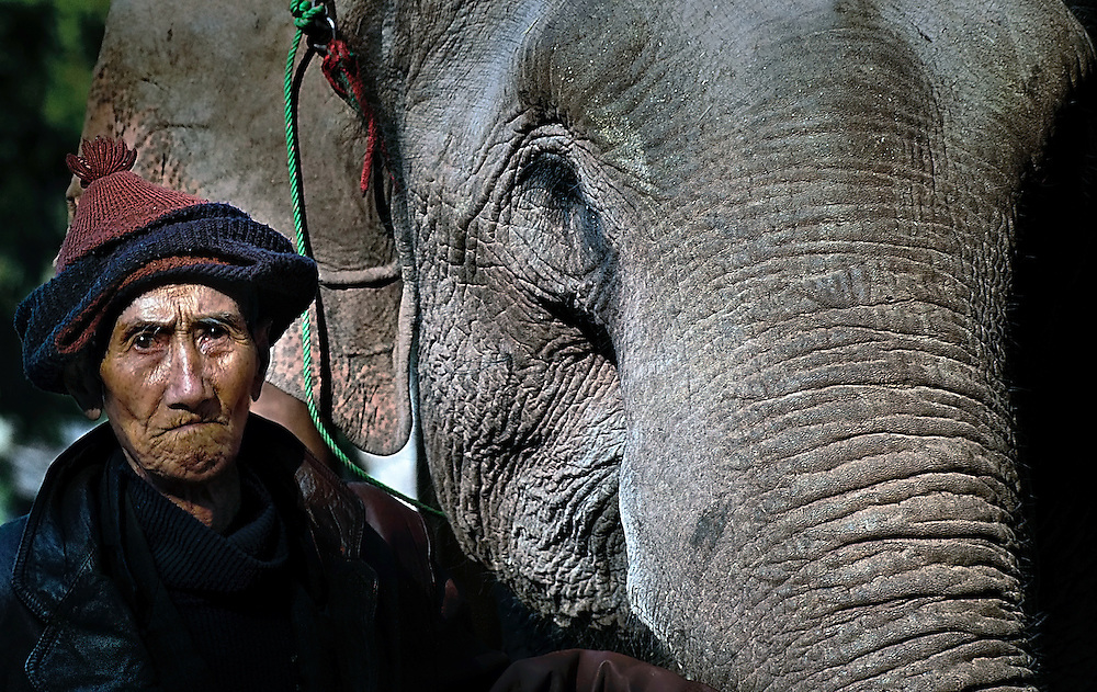 An old retired mahout in Hongsa, Laos treats his former workmate like a family member.