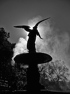 Bethesda, the Angel of the Waters in Central Park, is getting her annual bath after a long hot summer.
