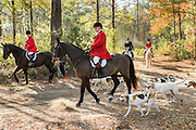 Huntsman Willie Dunn gathers the hounds for the start of the Fox Hunting season at Middleton Place Plantation November 27, 2016 in Charleston, SC. Fox hunting in Charleston is a drag hunt using a scented cloth to simulate a fox and no animals are injured.