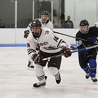 First Round, Augsburg vs Marian NCAA DIII Men's Hockey , March 10, 2018. Jeff Lawler, d3photography.com