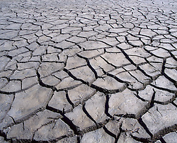 Dry and cracked earth