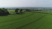 Crops growing in June 2018 near Ardee, Co Louth