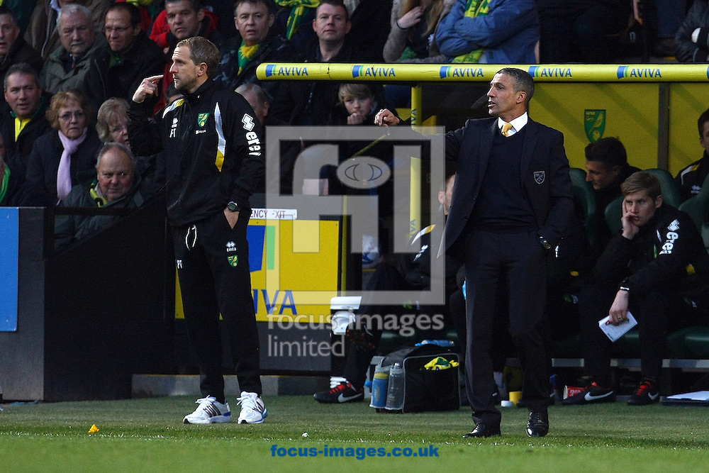 Picture by Paul Chesterton/Focus Images Ltd +44 7904 640267.15/12/2012.Norwich First Team Coach Paul Trollope and Norwich Manager Chris Hughton issue instructions during the Barclays Premier League match at Carrow Road, Norwich.