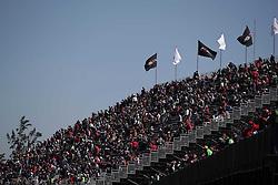 October 29, 2016 - Mexico - EUM20161029DEP22.JPG .CIUDAD DE MÉXICO MotoringAutomovilismo-F1.- Aspectos del segundo día de actividades previo a la celebración del Gran Premio de México de la Fórmula 1, 29 de octubre de 2016, Autódromo Hermanos Rodríguez. Foto: Agencia EL UNIVERSALAlejandro AcostaJMA (Credit Image: © El Universal via ZUMA Wire)