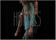 graphics - horses