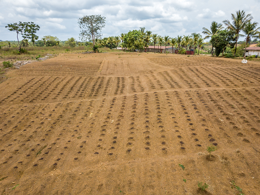 Aerial shot of a farm in Ganta, Liberia