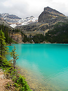 Beautiful, remote Lake O'Hara, with Seven Veils Falls in the trees and Yukness Mountain on the right, in Yoho National Park, near Field, British Columbia, Canada