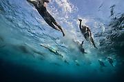 photographer - Gilad Kavalerchik<br /> <br /> The 28th Israeli Triathlon Championships 2014<br /> <br />    www.Giladka.com